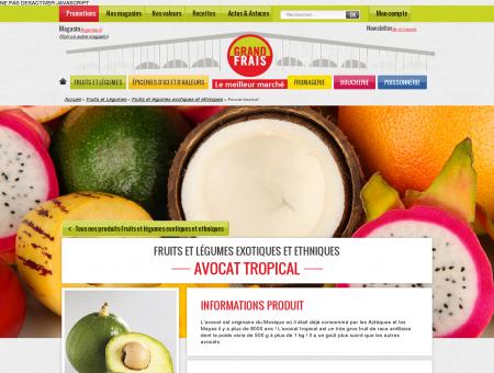 Avocat tropical: prix, recettes et conservation -...