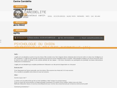 Loisirs, Psychologue du Chien Tournefeuille,...