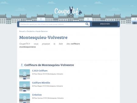 COIFFEURS MONTESQUIEU-VOLVESTRE -...