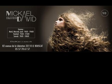 Mickael David - Salon de Haute coiffure à...