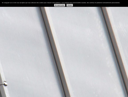 Couverture | entreprisemonacchino.com