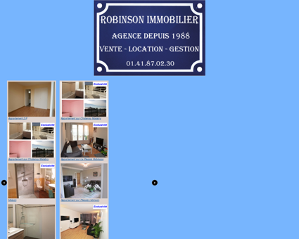 Robinson Immobilier