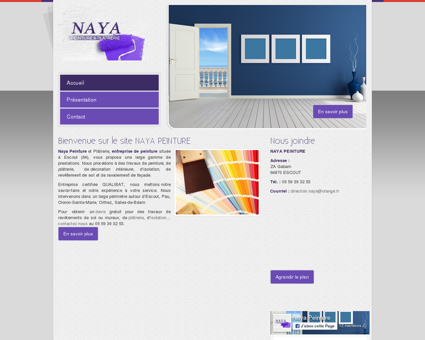 Naya Peinture : entreprise de peinture et...