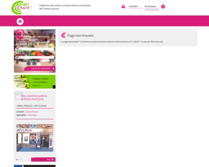 Commerce-Yzeron-Peintre - Plâtrier-CELLE...