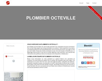 Plombier Octeville : Un plombier en urgence...