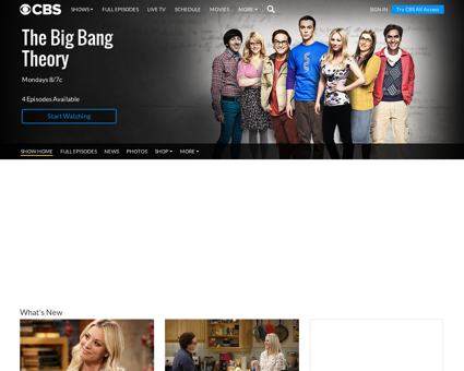 Big bang theory Bernadette