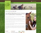 equitation-bourges-ecole-d-equitation-d-aubigny