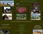 le-cheval-castillonnais