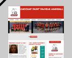 chevigny-saint-sauveur-handball-actualite
