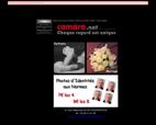 camara-hazebrouck-studio-moffelein
