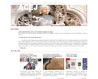 acej-association-culturelle-et-d-etudes-de-joigny