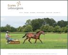 earl-lebourgeois-l-expertise-au-service-de-vos-chevaux