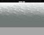 lhomme-freres-marolles-les-braults-dans-la-sarthe-72