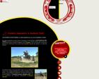vente-de-chevaux-equitation-les-ecuries-du