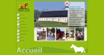 bienvenue-au-poney-club-de-romilly