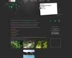 paysagiste-pierrelatte-aux-jardins-naturels-creation-de-jardins-saint