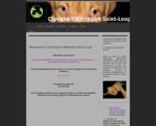 clinique-veterinaire-saint-loup-marseille-13010-site